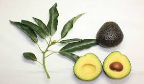 An avocado a day keeps the aesthetic doctor away by Best Facials Singapore